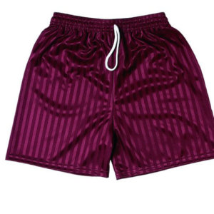 Shadow Stripe Shorts BY ZECO