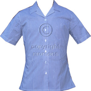 Bishopshalt School Shirt